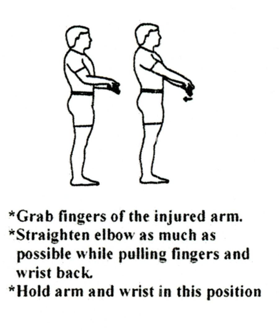 elbow_flex3
